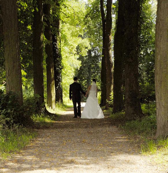 Hochzeitsfotos Vom Hochzeitsfotografen